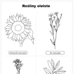 Wiosenne Kwiaty Zestaw 8 Kolorowanek Printotekapl