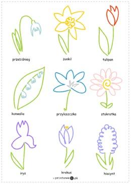 Wiosenne kwiaty - jedną linią - Printoteka.pl
