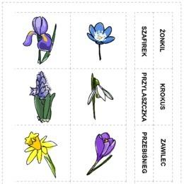Wiosenne Kwiaty Z Podpisami Printotekapl